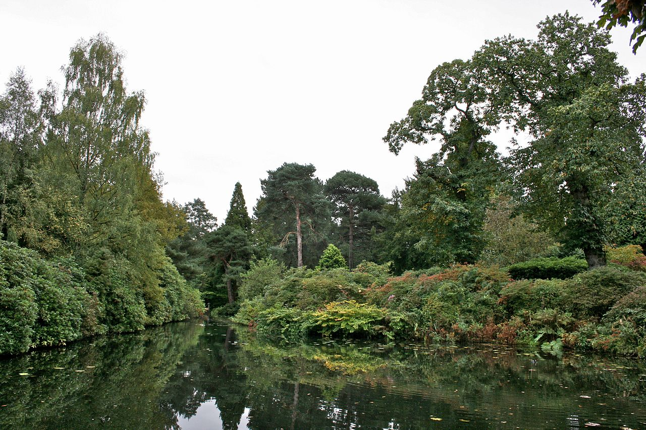 1280px-Pond_at_Tatton_Park_2.jpg