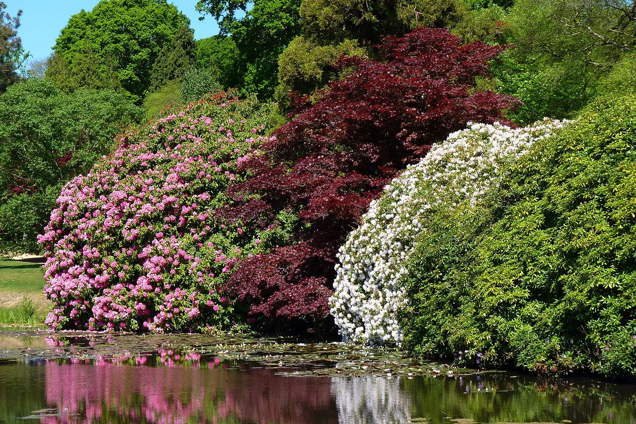 1280px-Sheffield_Park_Garden02.JPG