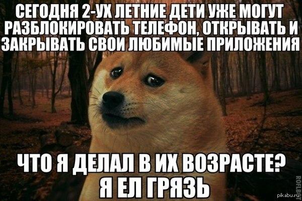 1398162764_938868909.jpg