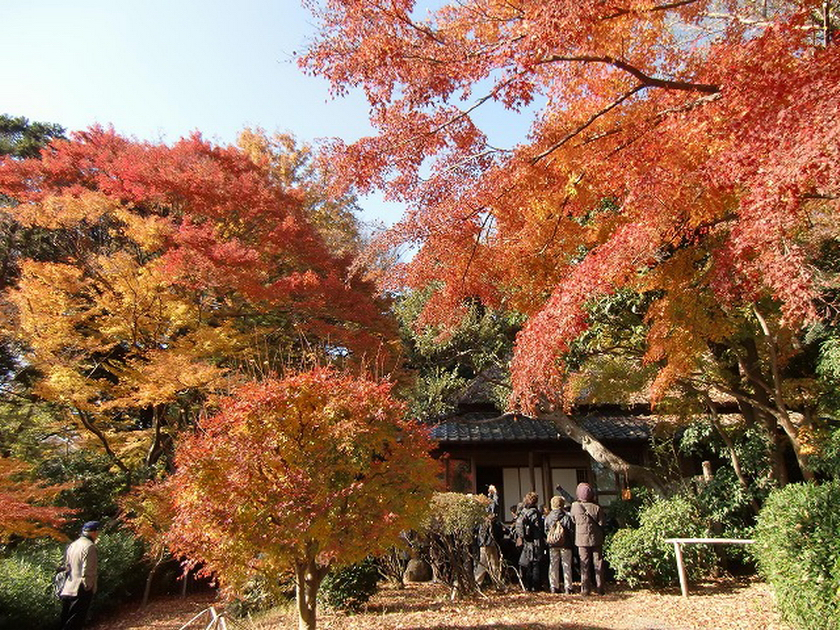 140.Каваи Гёкудо. Дом.jpg