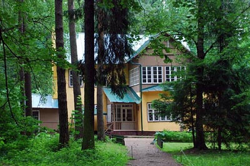 151-2.Дача К.Чуковского в Переделкино.jpg