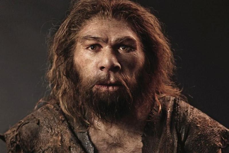 1511530113_poslednie-neandertalcy-zhili-v-yuzhnoy-iberii.jpg