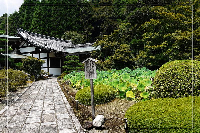 157.Сайхо-дзи.Помещение для монахов.jpg