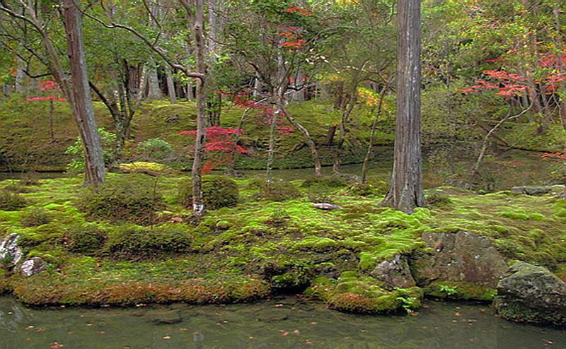 169.Сайхо-дзи.Остров Касумидзима.jpg