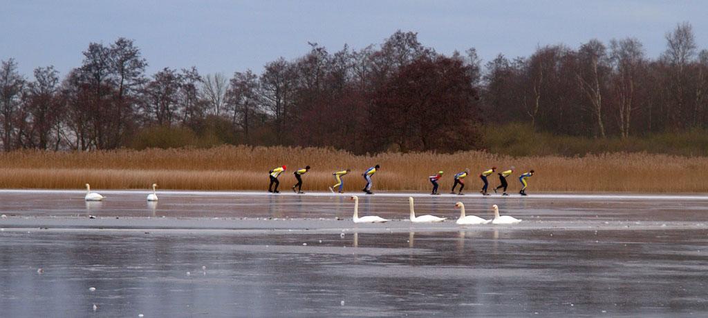 17-Лебеди и конькобежцы на реке в Голландии.jpg