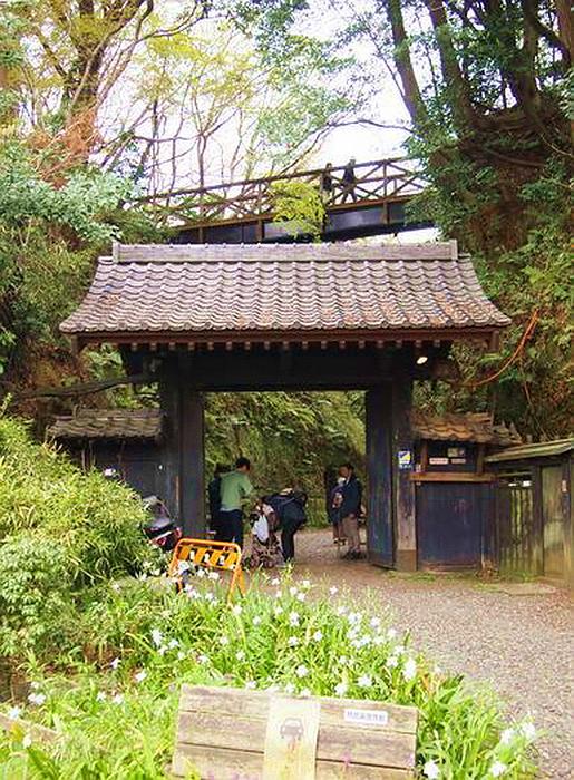 17.Нагао Кинъя.Огико.Главные ворота.jpg