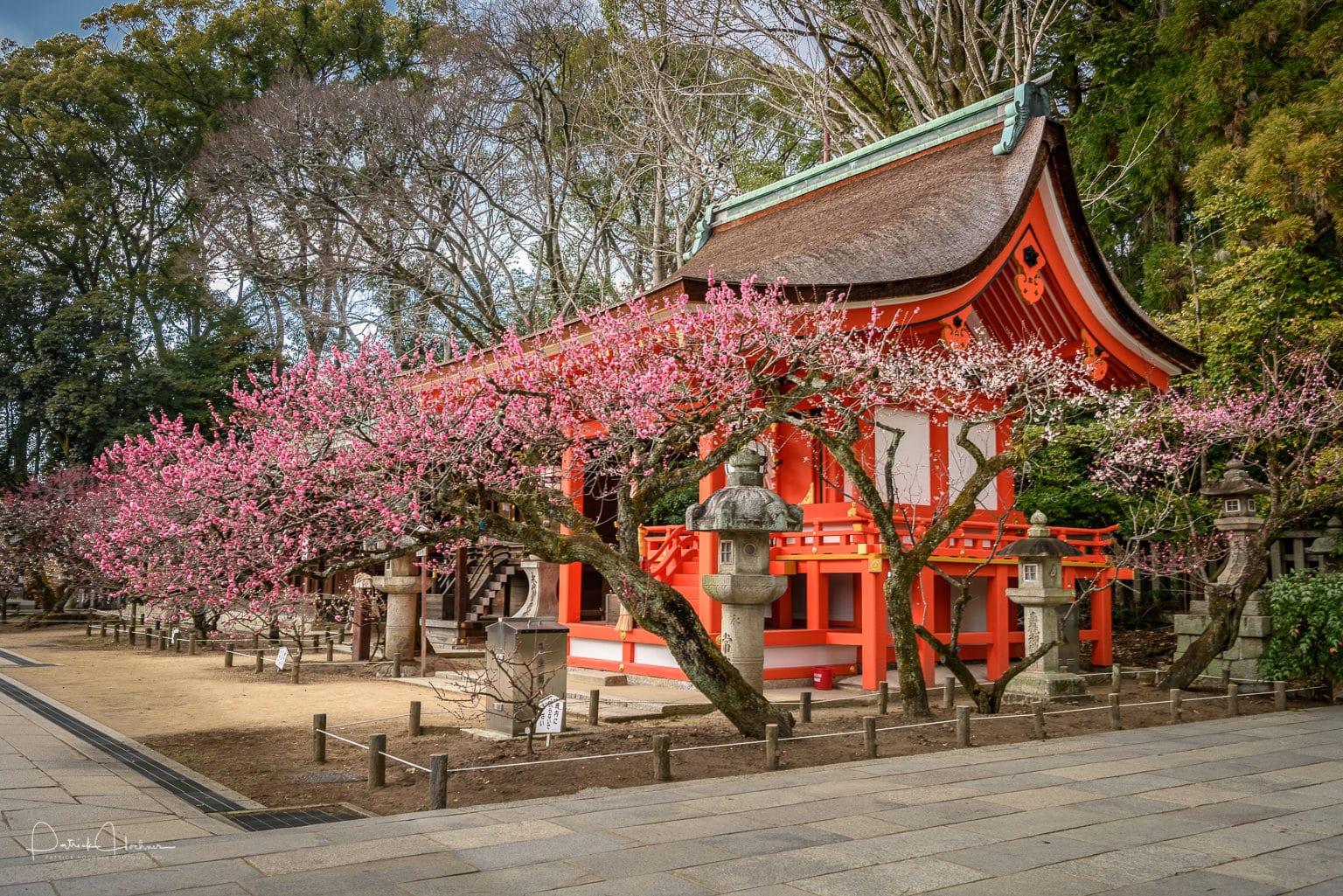 170314_Kyoto-Kitano-Tenmangu-.jpg