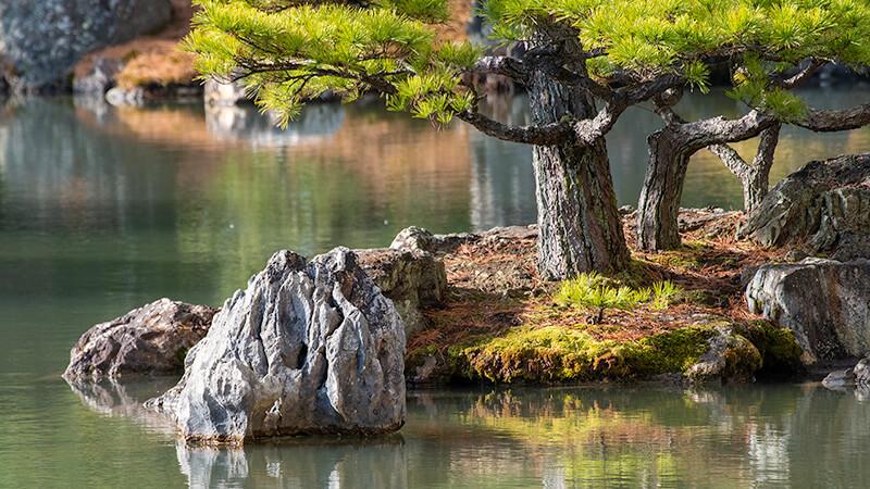 199.Кинкаку-дзи.Камень девяти гор и восьми морей..jpg