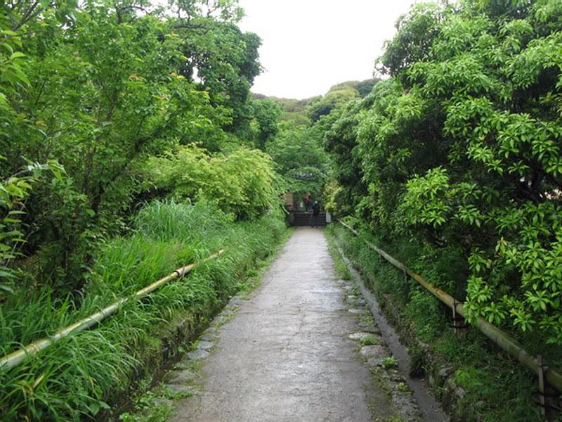 20.Дзёруридзи.Дорога к храму.jpg