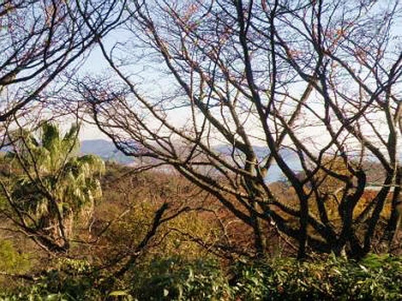 21.Нагао Кинъя.Огико.Залив от Фусимитэй.jpg