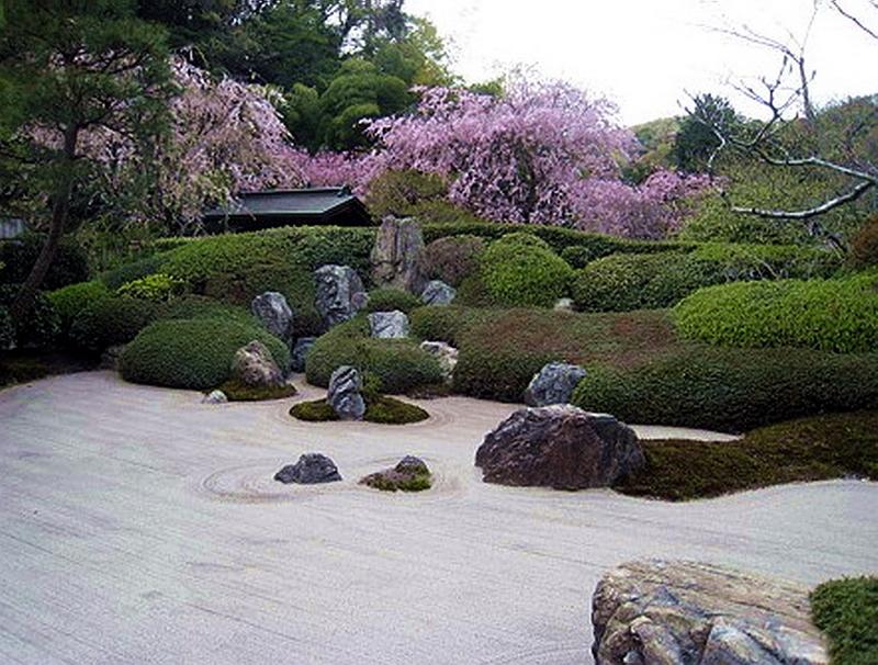 29.Сонэ Сабуро.Мэйгэцу-ин.плакучая вишня.jpg