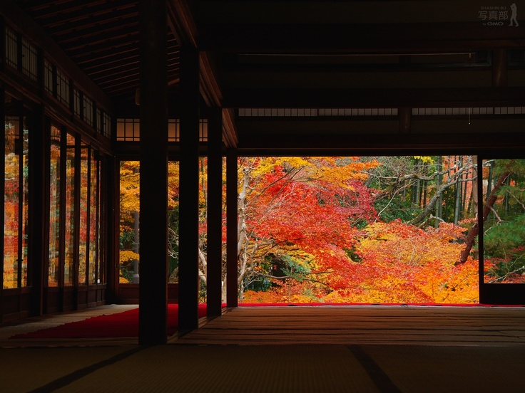 2de04827fb479696bfe6c445c29da2a5--autumn-garden-japan.jpg