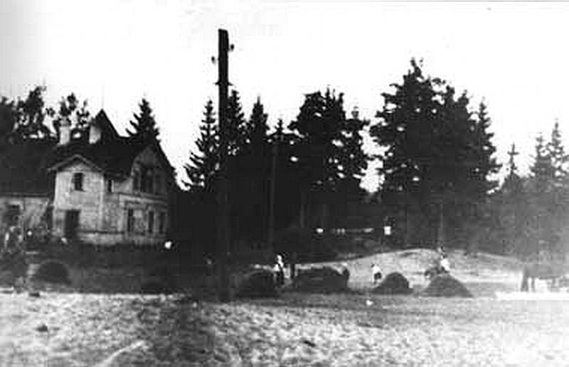 321.Маленькая дача, вид от залива (1946).jpg