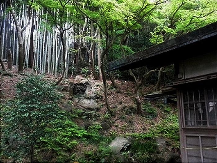 33.Нагао Кинъя.Огико.Водопад.jpg