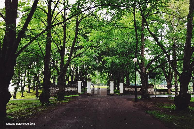 341.Дворцовые ворота.jpg