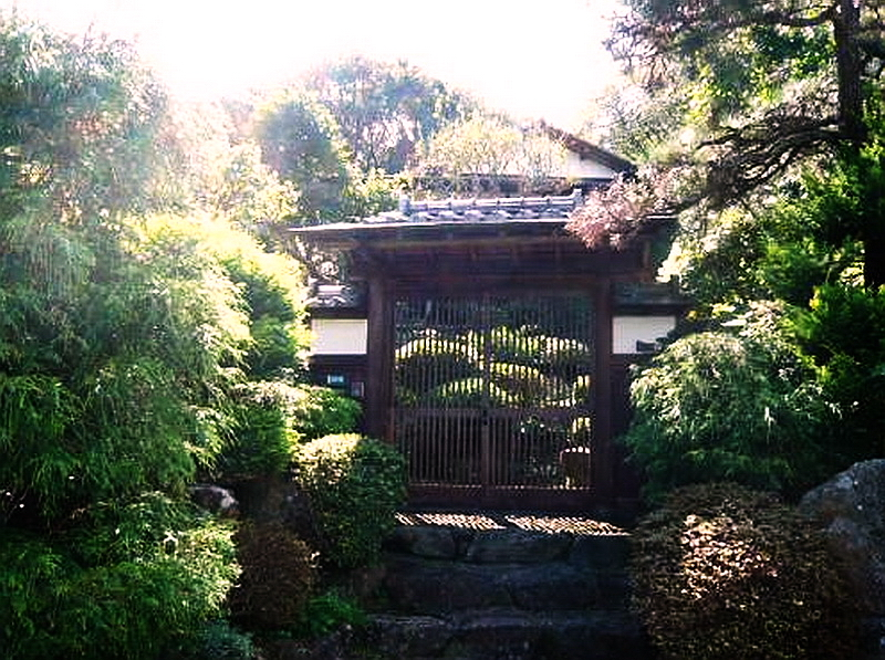 35.Сидзуока 1967.Ворота.jpg