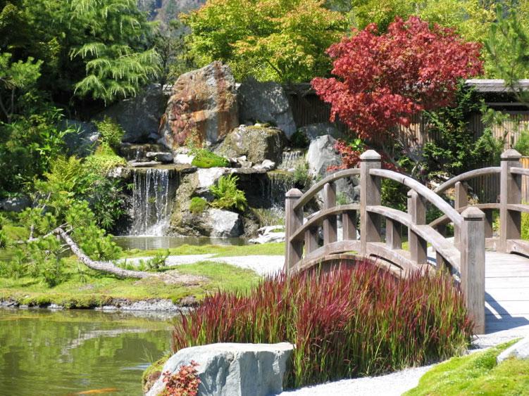 47.Китайский сад.jpg