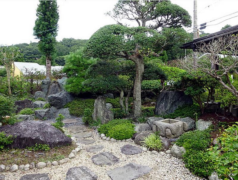 54.Сидзуока 1981.Цукубаи.jpg