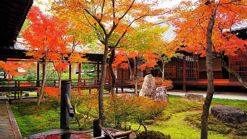 59.Китаяма Ясуо.Тёон-тэй.Осень.jpg
