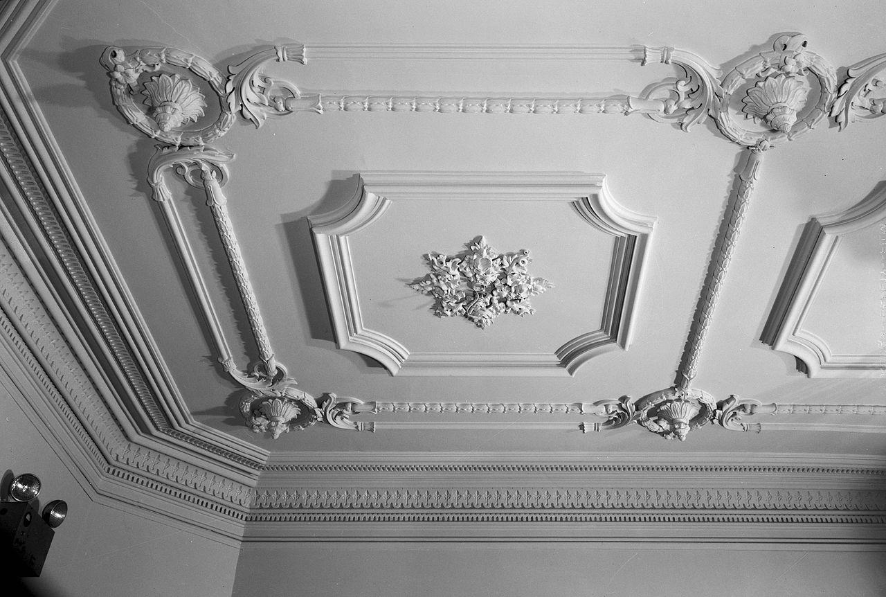 6._John_M._Davies_House,_Entrance_Hall_Ceiling_Detail.jpg