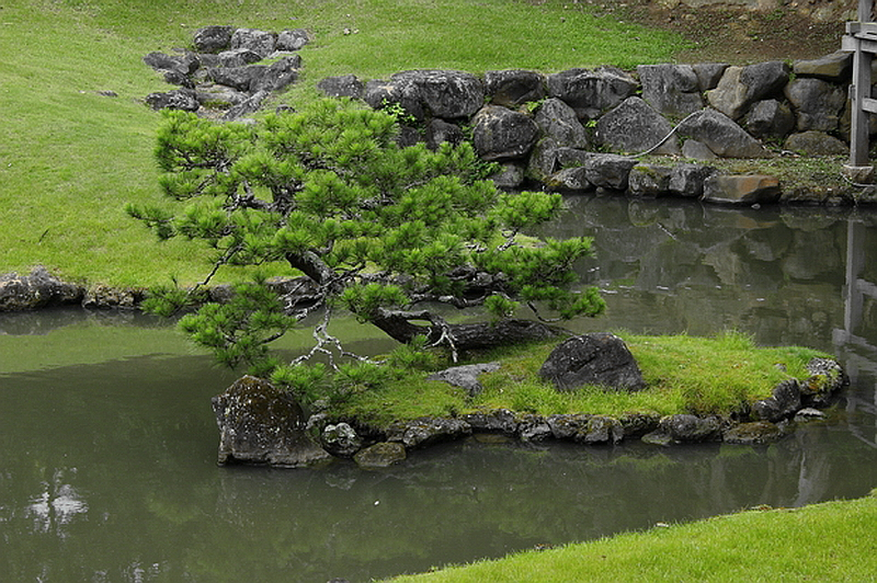 67.Кэнтё-дзи.Сад Сампэкити.Остров черепахи.jpg