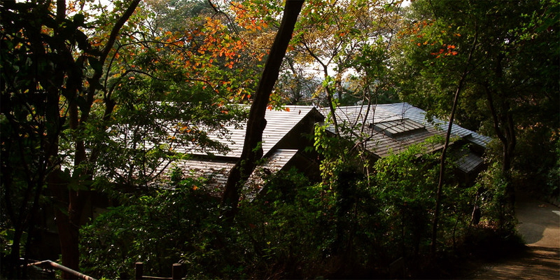 71.Дом Мусянокодзи Санэацу.jpg