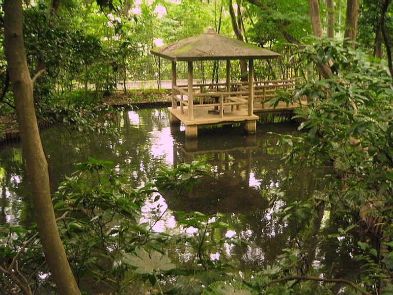 74.Сад Мусянокодзи Санэацу. Верхний пруд.JPG