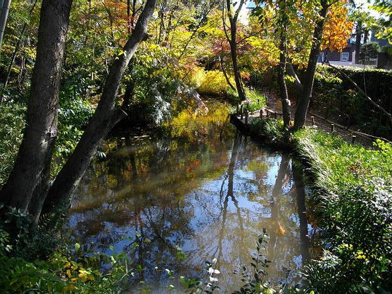 75.Сад Мусянокодзи Санэацу. Нижний пруд.jpg