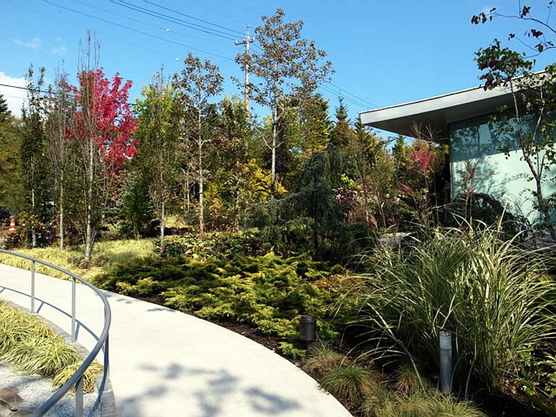 79.Нсидзава Рюэ.Художественный музей Сэндзю Хироси.Озеленение территории.jpg