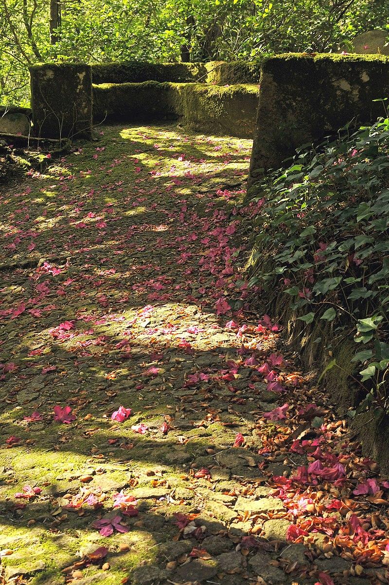 800px-Sintra,_Parque_da_Pena_17.jpg