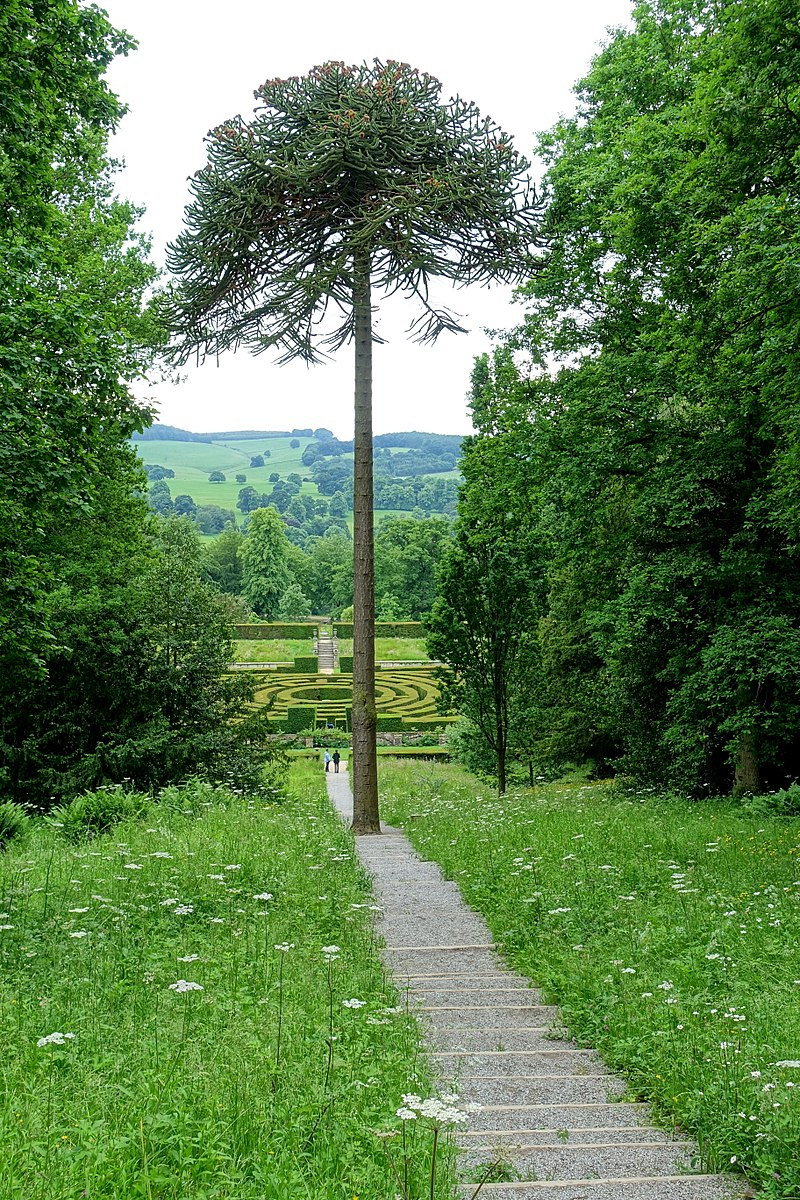 800px-Stairs_to_the_maze_-_Chatsworth_House_-_Derbyshire,_England_-_DSC03621.jpg
