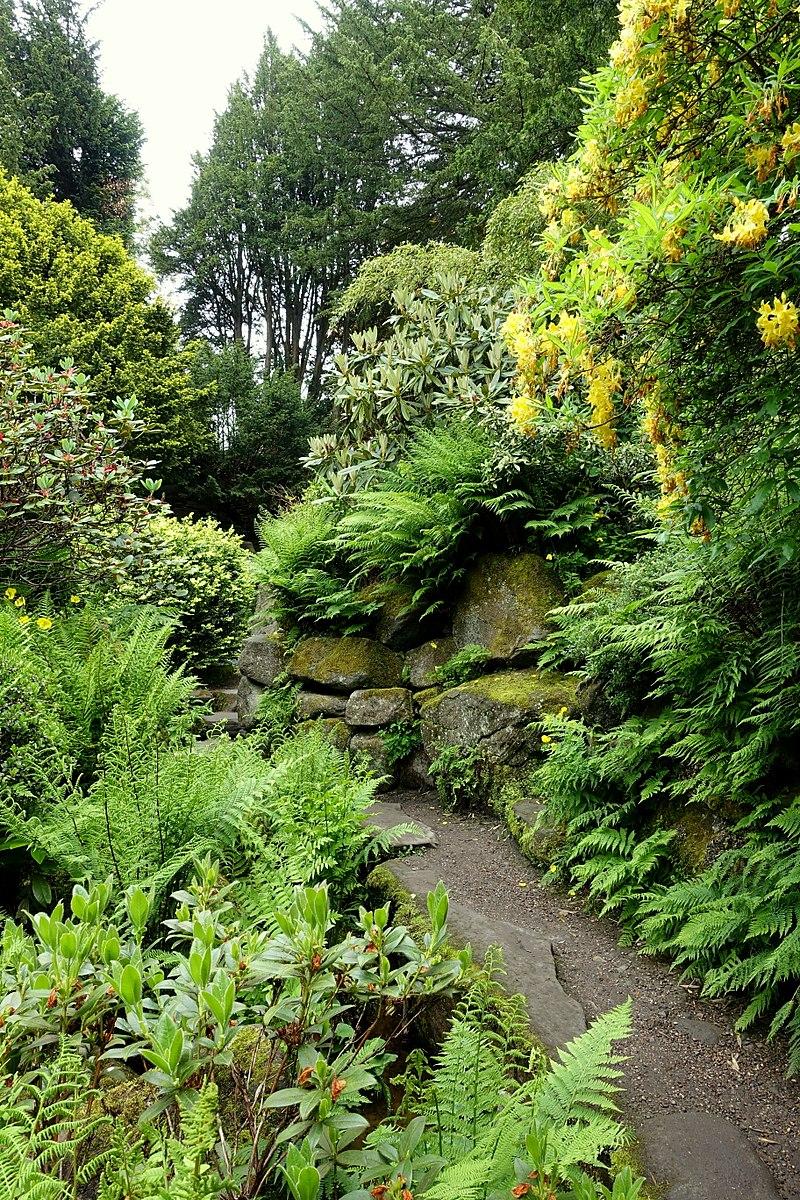 800px-Walkway_-_Biddulph_Grange_Garden_-_Staffordshire,_England_-_DSC09448.jpg