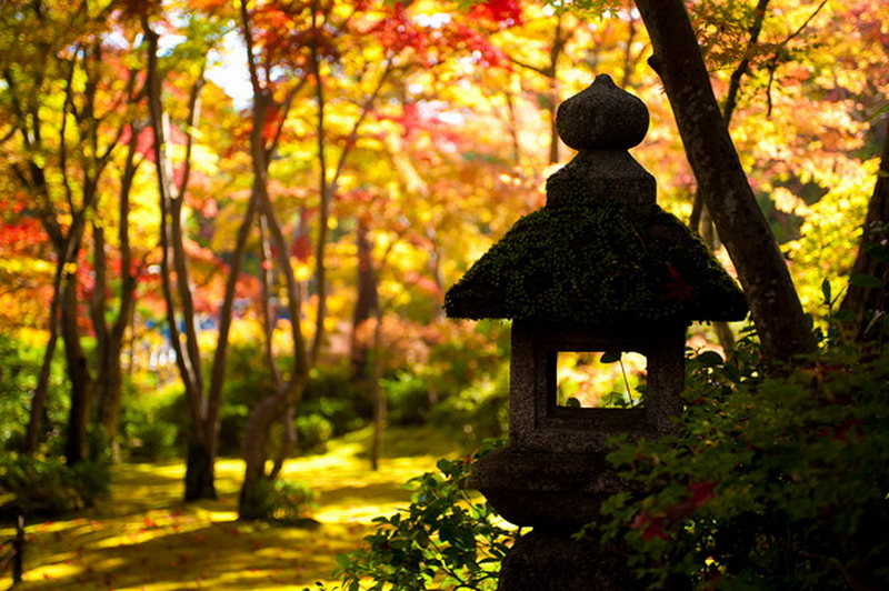 83.Окоти Дэндзиро. Осень.jpg