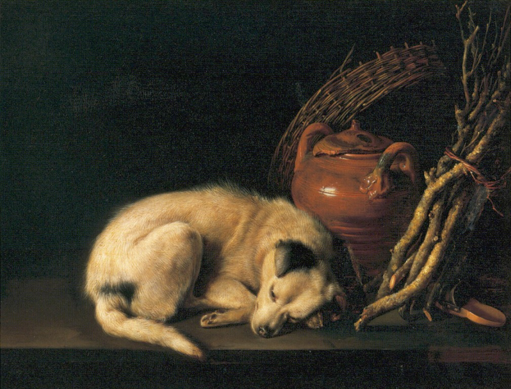 a-sleeping-dog-with-terracotta-pot-1650.jpg