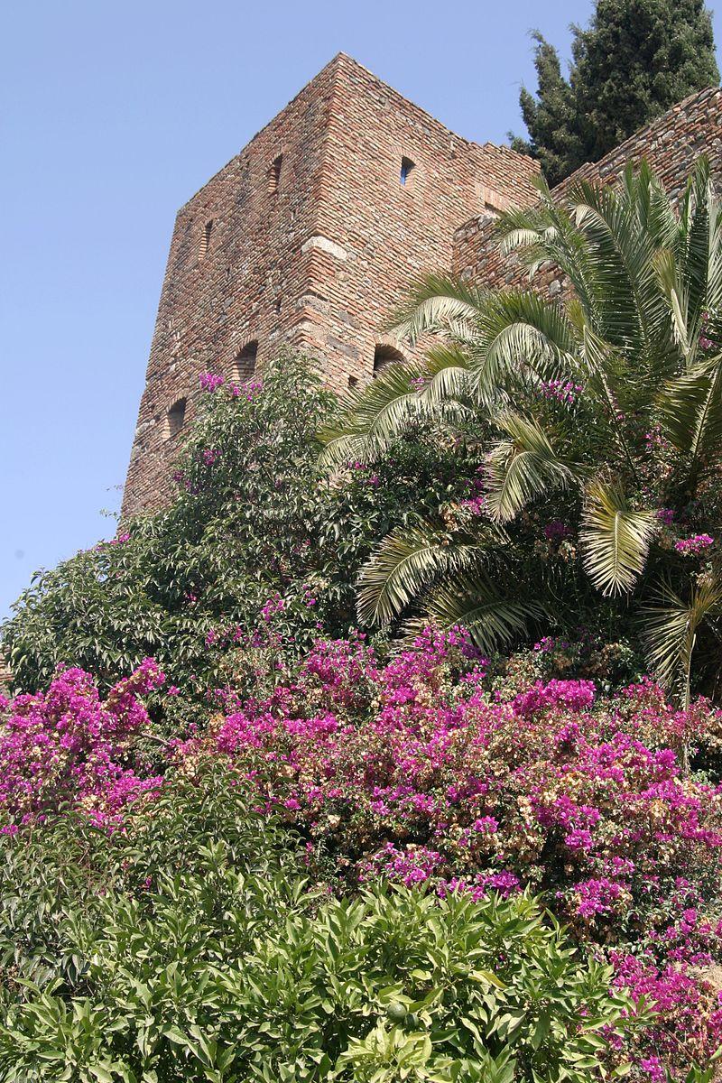 Alcazaba-IMG_2805.jpg