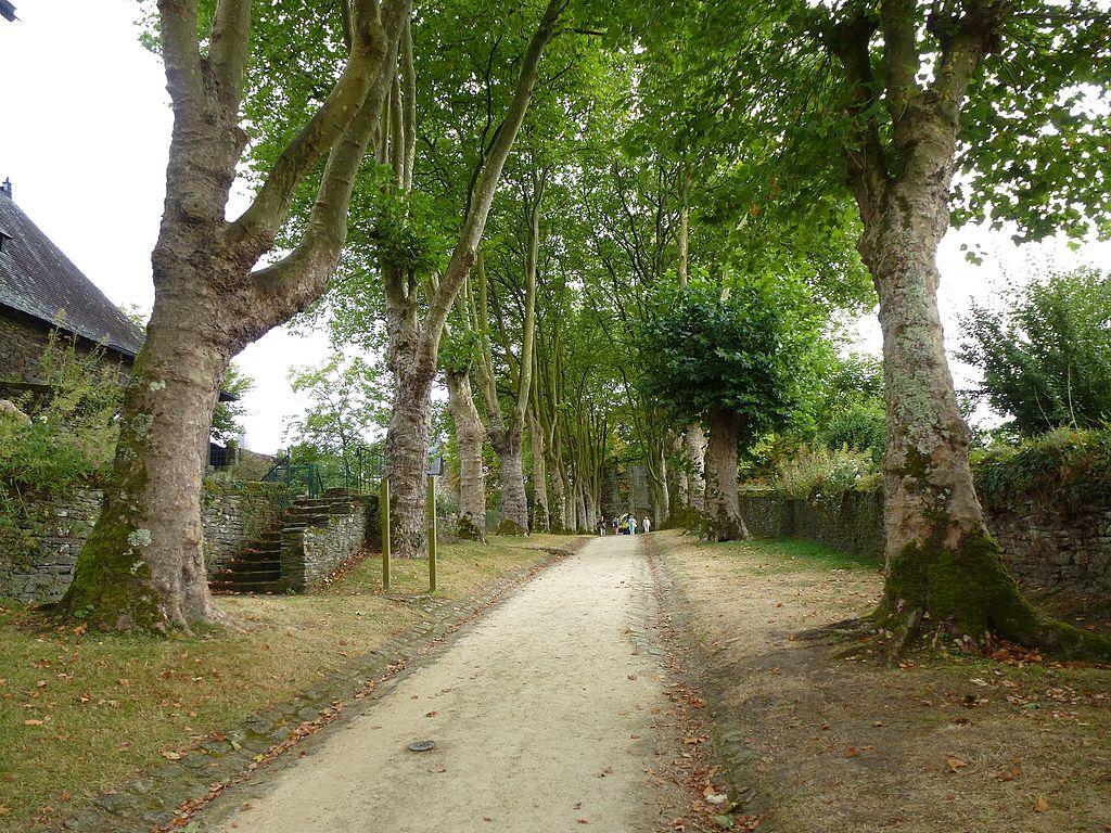 Allée_du_chateau_-_panoramio.jpg