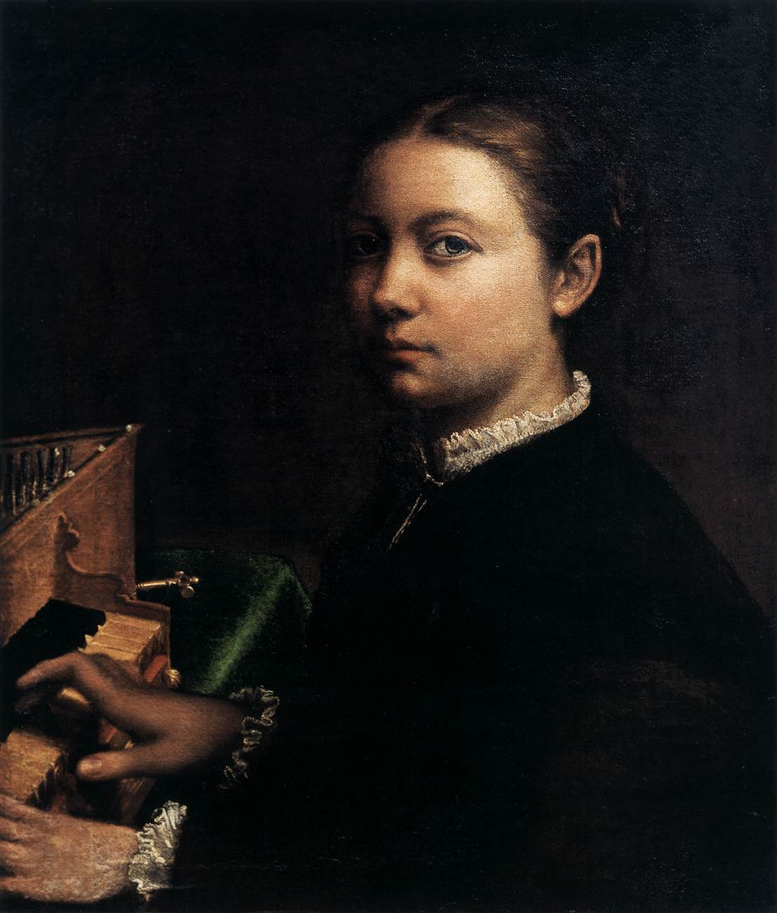 Anguissolaselfspin.jpg