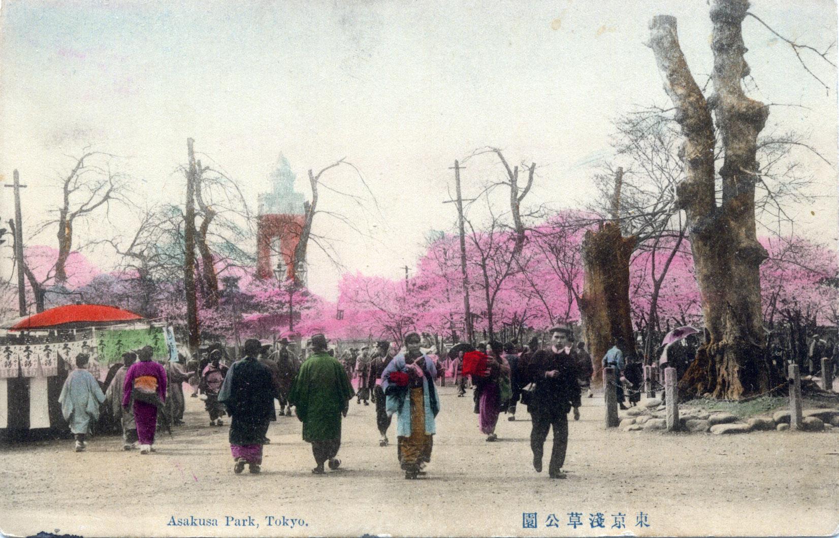 asakusa-park-blossom-300.jpg