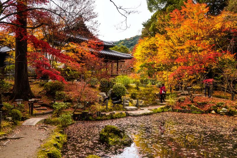 autumn-colors-tenjuan-temple-kyoto-people-traveler-visit-.jpg