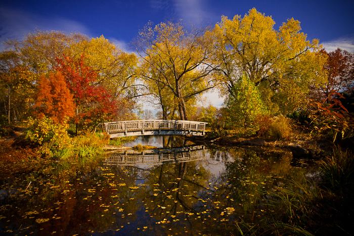 autumn_monet_by_studiofovea-d4etn8a.jpg