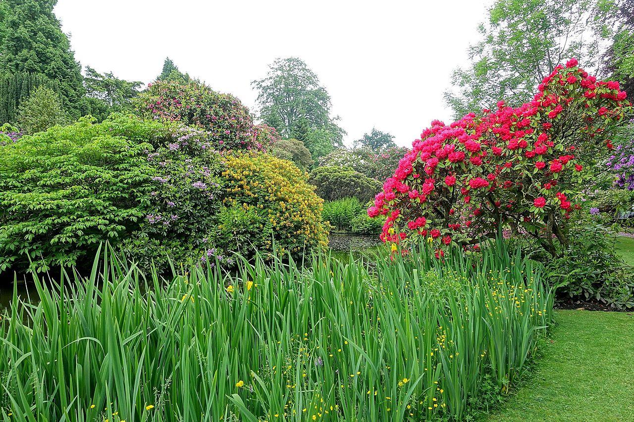 Biddulph_Grange_Garden_-_Staffordshire,_England_-_DSC09120.jpg