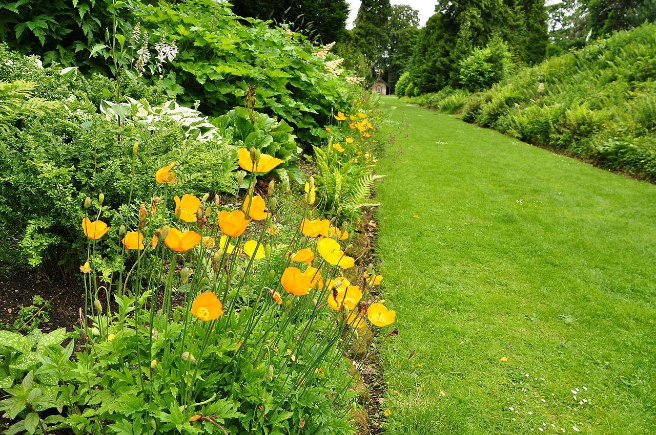 Brodsworth_Hall_gardens_(9100).jpg