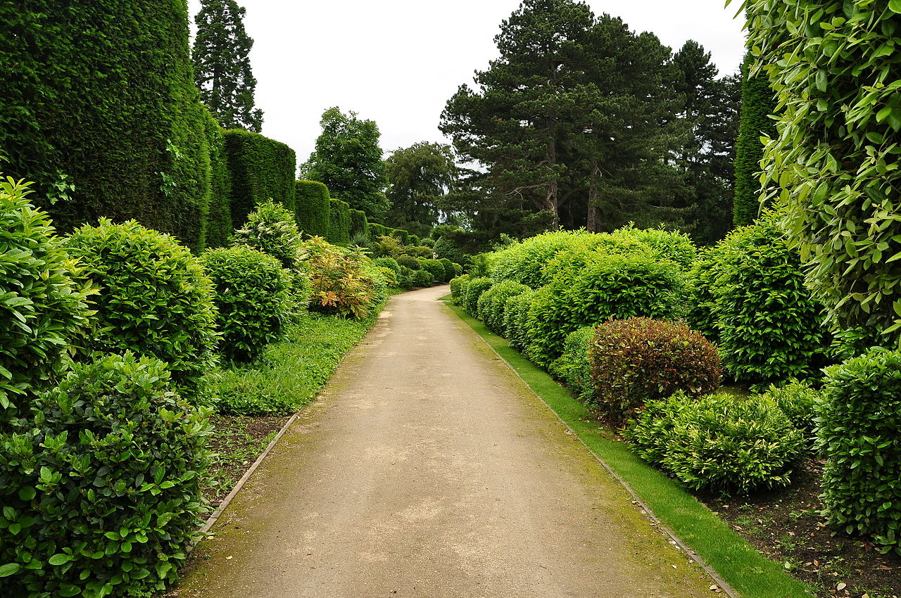 Brodsworth_Hall_gardens_(9146).jpg