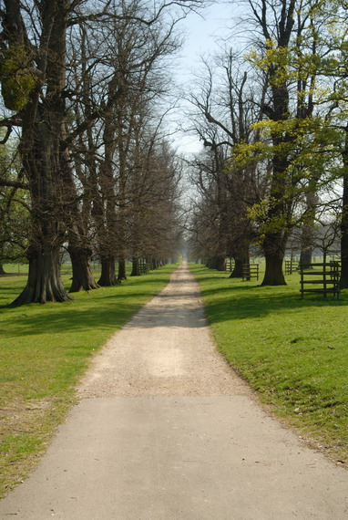Burghley_House_Grounds_-_geograph.org.uk_-_661479.jpg