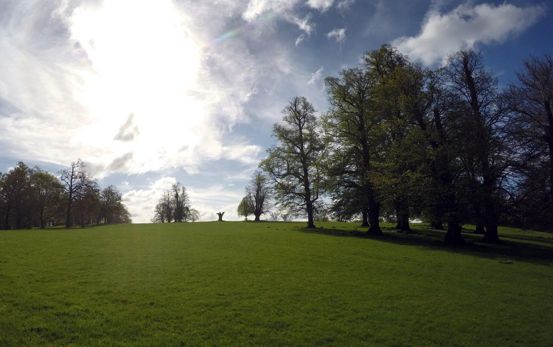 Burghley_House_park,_landcape_april_2017a_05.jpg