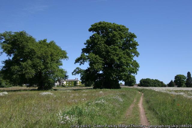 Catton-Park.jpg