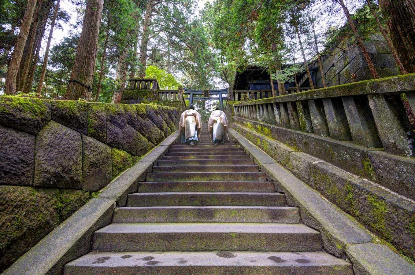 Climbing-the-steps-to-Ieyasus-shrine-а.jpg