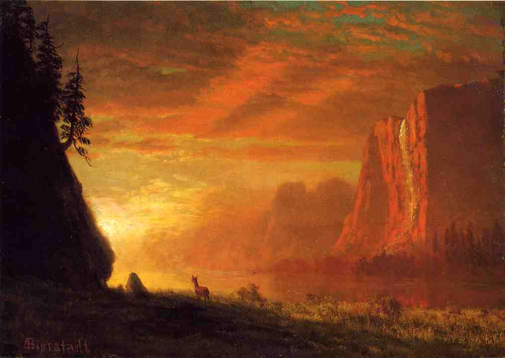 deer-at-sunset.jpg