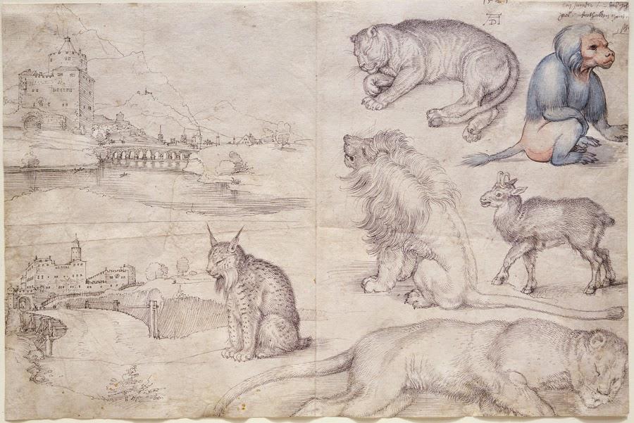 durer-animals.jpg