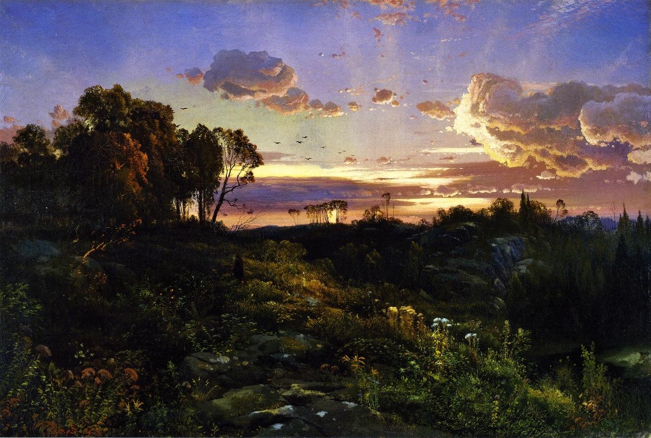 dusk-wings-1860.jpg